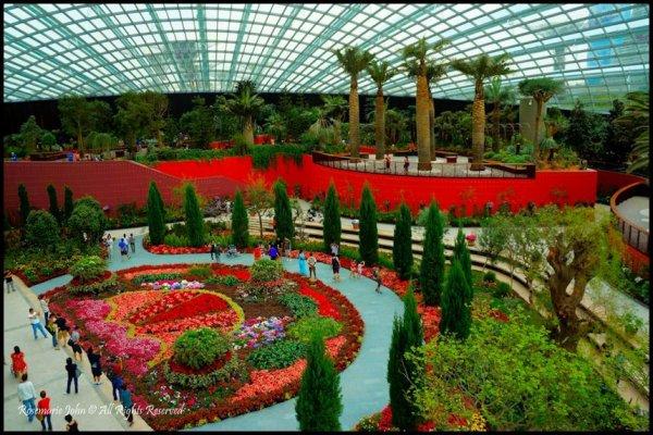 Jardins botaniques de Singapour