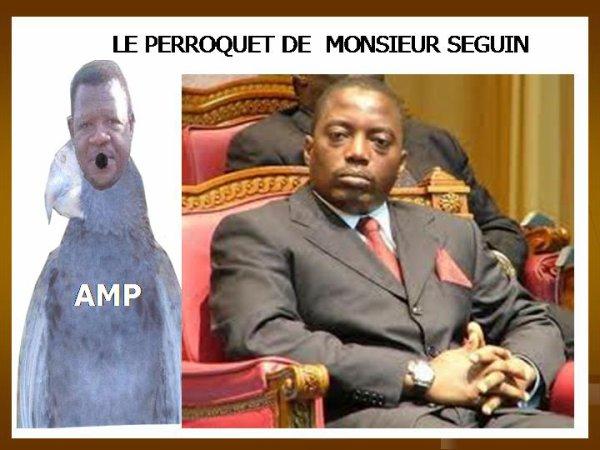 ARMAND VISION NEWS :   LE PERROQUET DE MONSIEUR SEGUIN