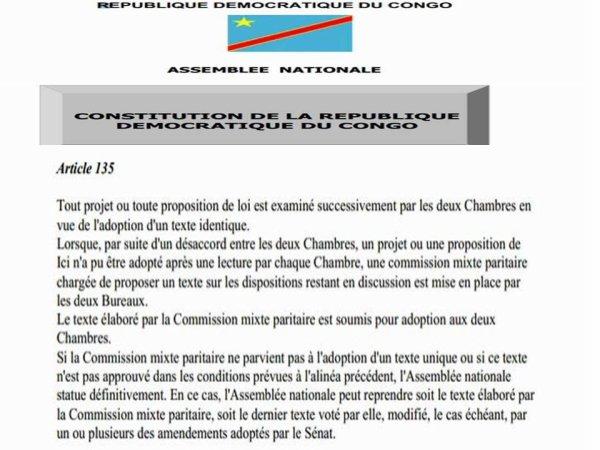 LA VOIX DU PEUPLE CONGOLAIS: Mesdames et Messieurs les députés, nous vous demandons que la voix du peuple Congolais soit entendue et respectée.