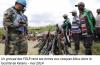 RD Congo - Rwanda : L'épouvantail « FDLR » et les vérités inavouables