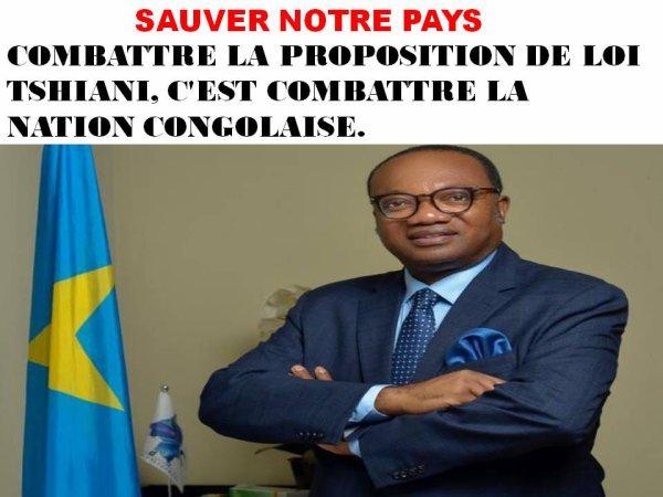 RDC: SOUTENONS LA PROPOSITION DE LOI TSHIANI POUR SAUVER NOTRE PAYS