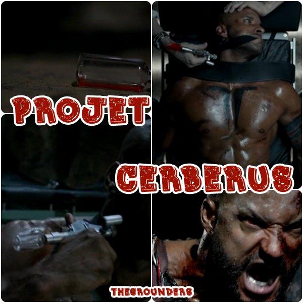 Le projet Cerberus