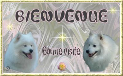 Bienvenue a tous !!!!