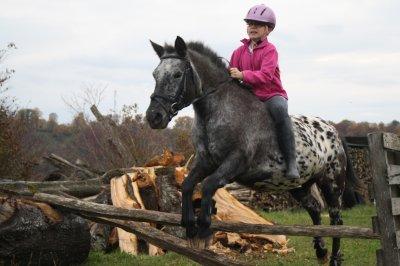 L'amitié d'un cheval n'a pas de prix car celle-ci est infinie...