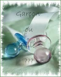 << Fille Ou Garçon : Prénoms A Choisir >>