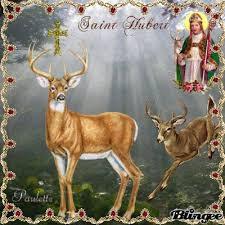 Bonne saint hubert a tous!!!!!!