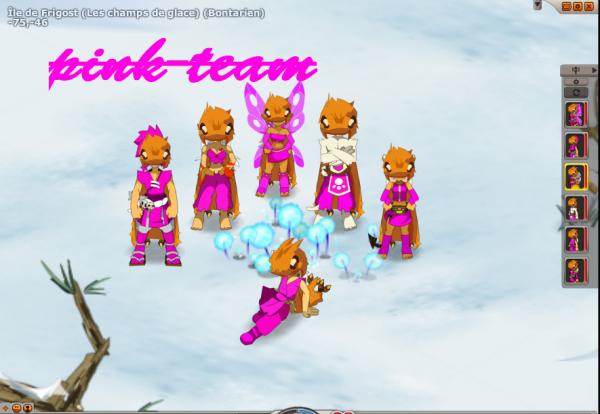 l'avancement de la pink-team.