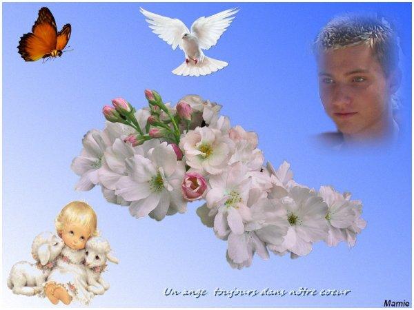 Pour toujours dans nôtre coeur tit ange