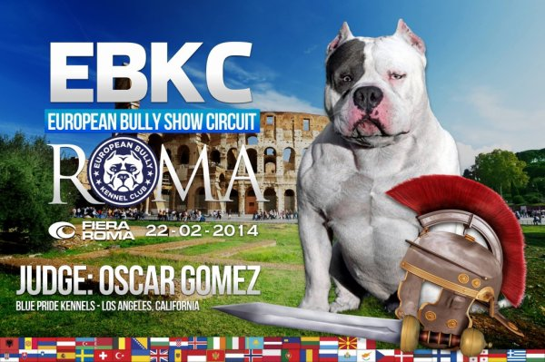 EBKC EUROPEAN BULLY SHOW CIRCUIT - ROMA 2014