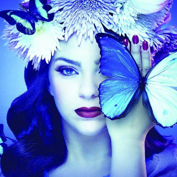 Blue Velvet !