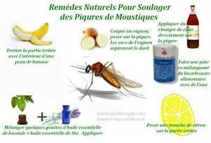 REMÈDES NATURELS SOULAGER DES PIQÛRES DE MOUSTIQUES