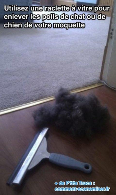 Astuce, magique rapide pour enlever les poils de votre chat ou chien :