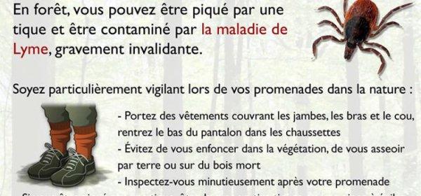 Maladie de Lyme documentaire - sous titrage en Français