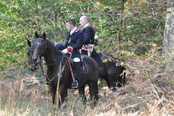 Vendredi 31/10/2014. Forêt d'Ermenonvile. (2)