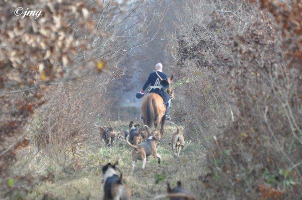 Mardi 09 décembre 2014. Forêt de Chantilly. (3)