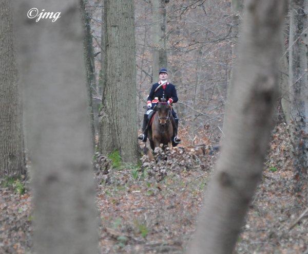 Samedi 27/12/14.Forêt d'halatte.