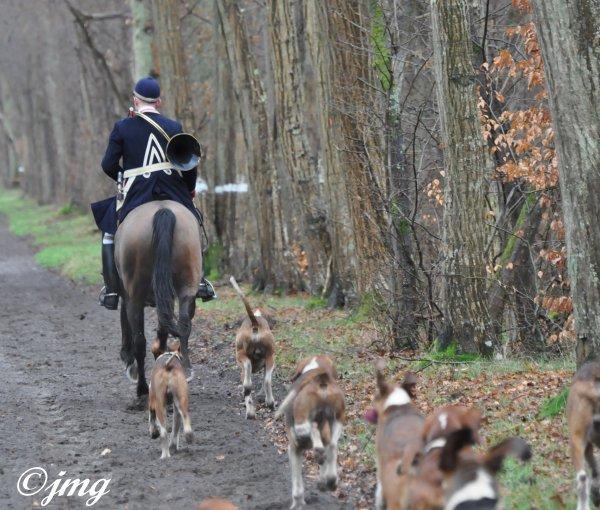 Mardi 13/01/15. Forêt de Chantilly.