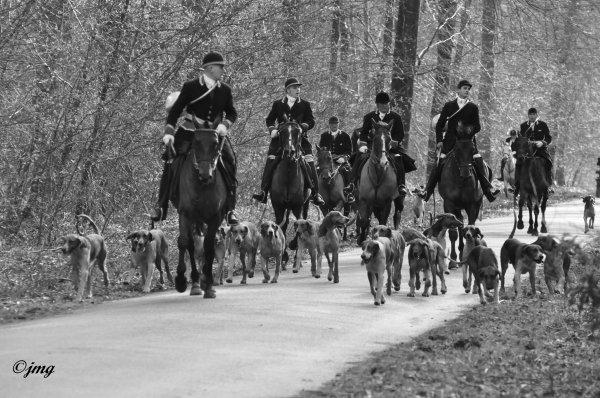Samedi 24/01/15 Forêt d'Ermenonville.