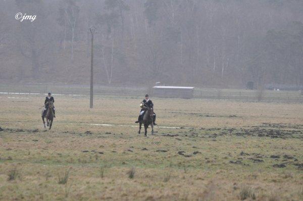 Mardi 03/03/2015. Forêt d' Ermenonville. (2)