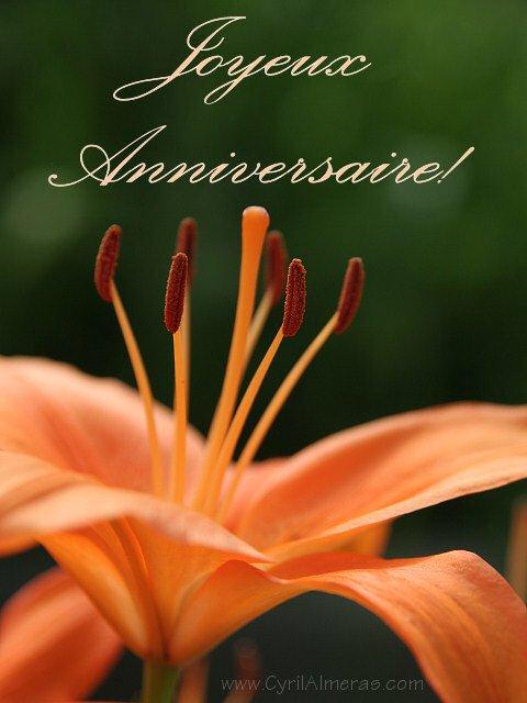 18 Mars 2011 Joyeux Anniversaire Pour Mon Amie Francoise Fleurs