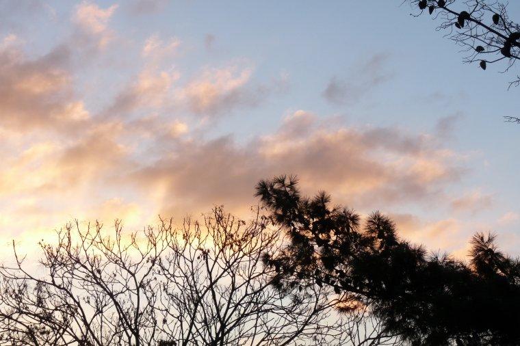 Hier matin lever du jour depuis ma chambre (Pierre Paul)