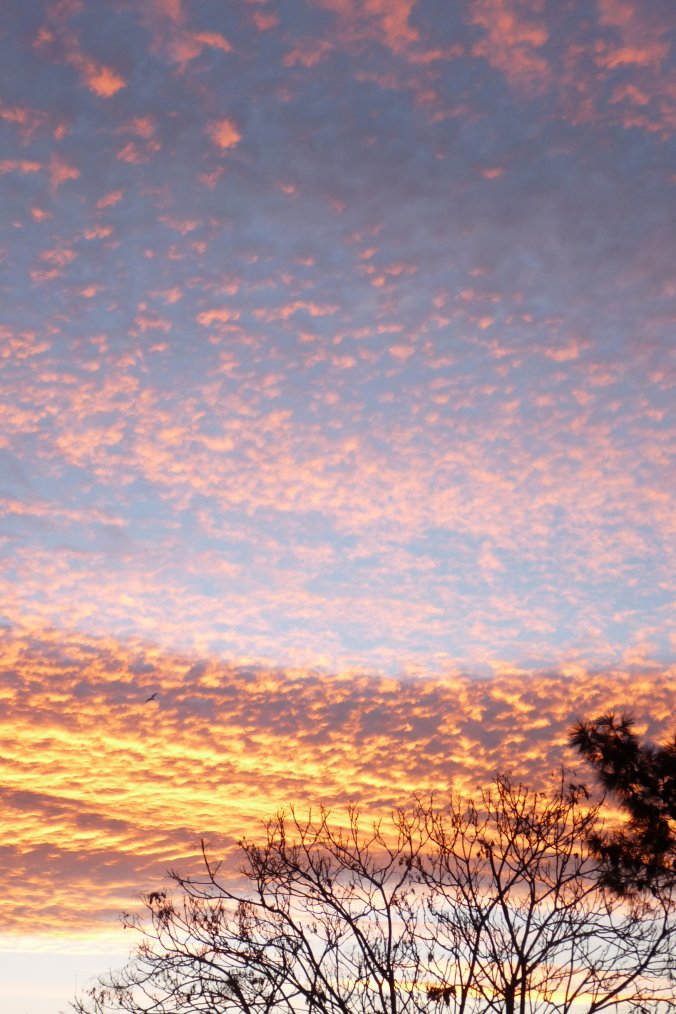 25 janvier 2014 à 8h10 le ciel à Marseille (depuis ma chambre ) (photos Pierre Paul