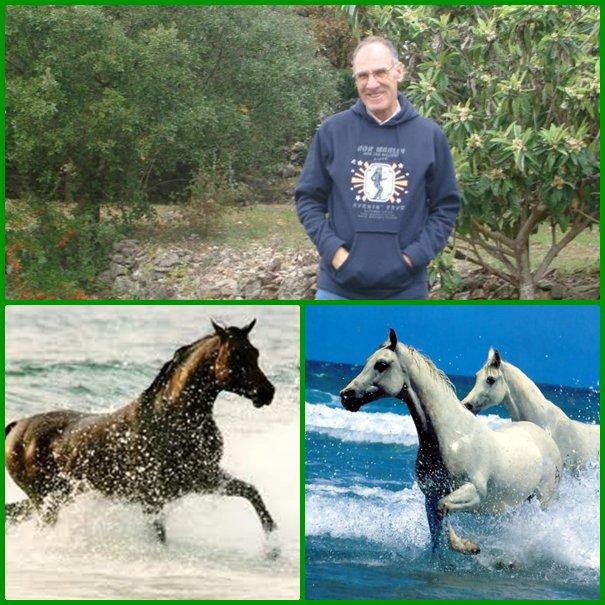 Anniversaire Blog de Pierre Paul le 20 avril 2014- 6 ans de blog - Merci - 133 900 visites