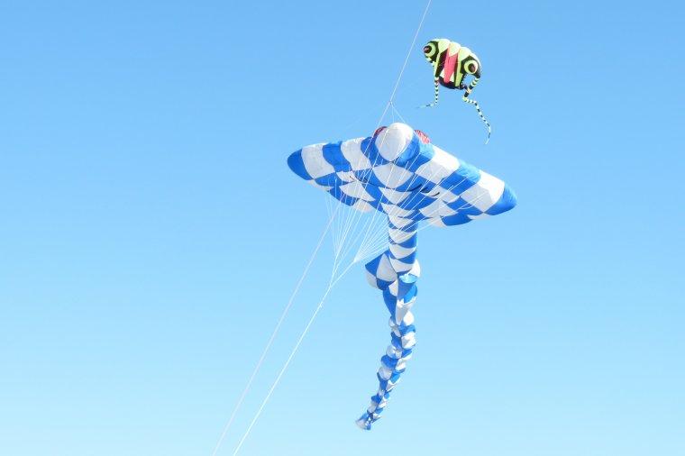 Samedi 19 et dimanche 20 septembre fête du vent à Marseille