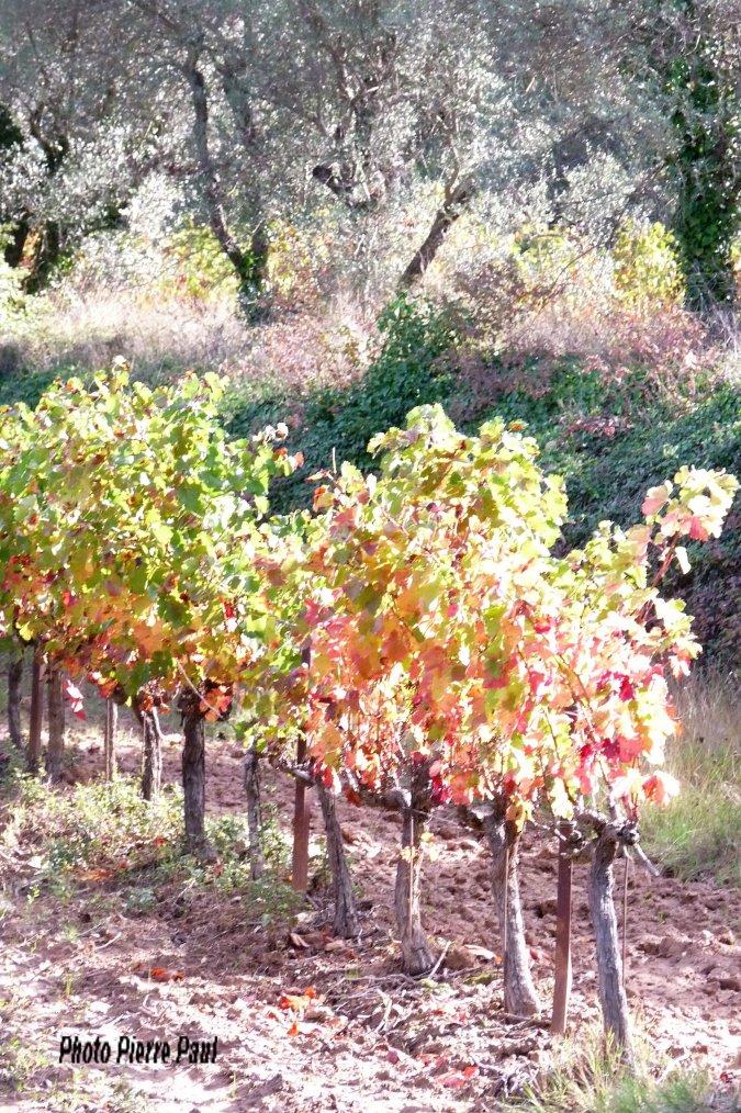 L'automne vu par Pierre Paul