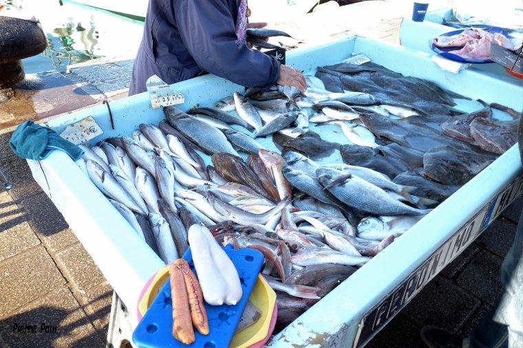 Marché aux poissons frais sur le vieux port de Marseille ( suite )