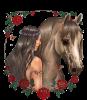Un sublime cadeau de mon amie Véro du blog Amina-Princesse -reveuse