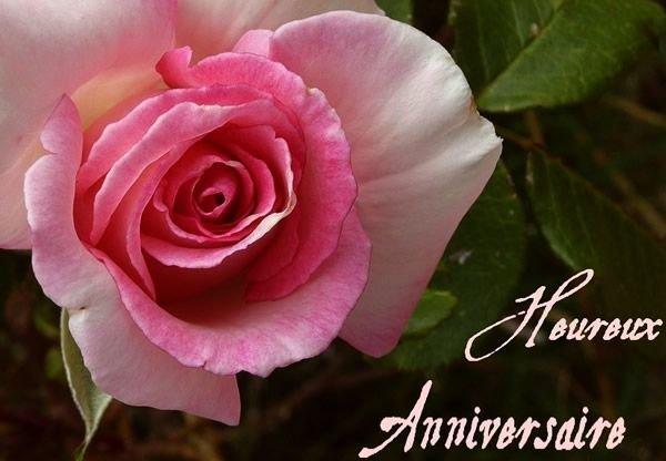 22 mai Joyeux anniversaire pour Evelyne du blog Nomakalumaque