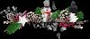 Joyeux Noël  pour Pierre Paul  et sa famille ( de la part de Véro  Amina-Princesse-Reveuse
