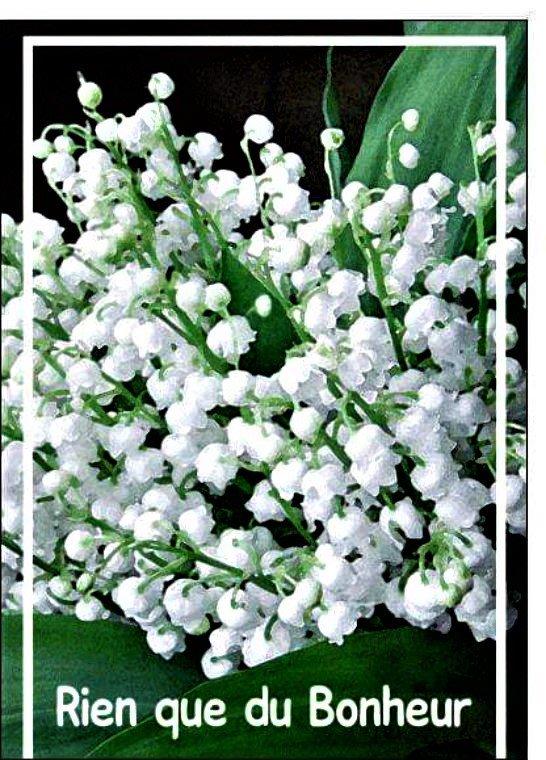 Cadeaux de mon amie Fanfan ( blog 111 Fanfan) Que du bonheur pour Pierrot mon ami
