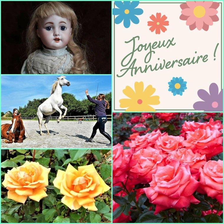 18 juin Joyeux anniversaire pour mon amie Marie-Thérèse du blog Galanthe