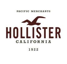 Zoom sur Hollister.