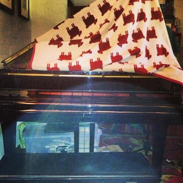 "Greyson a poster cette photo en disan ""pianos coupe trichent feuille"""