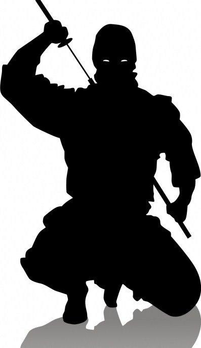 Ninjas contre Samouraïs