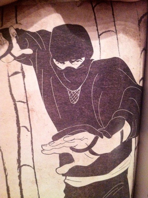 Le ninja dans le noir....
