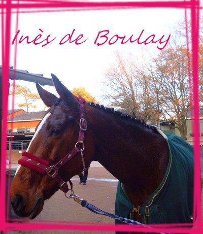 Inès de Boulay (L)