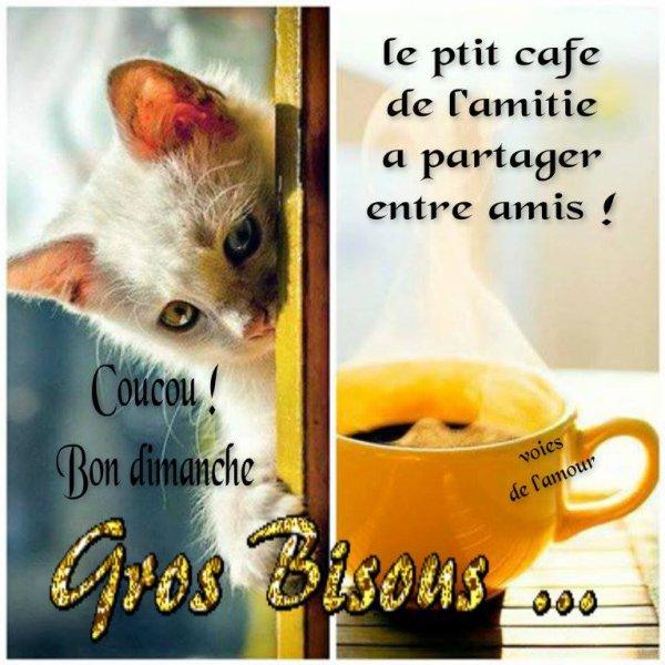 Assez Bonne journée les z'ami(e)s - Blog de korrigan22 GB77