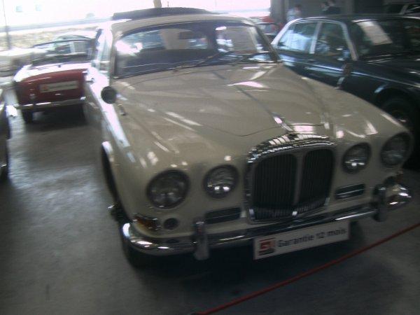 Daimler 420 soverleig