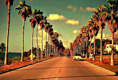 Chapter One : Welcome to California ♥