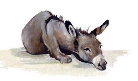 L'âne au fond du puits ...