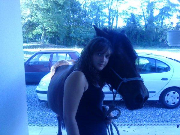 « Votre cheval vous ressemble comme votre reflet dans un miroir. »