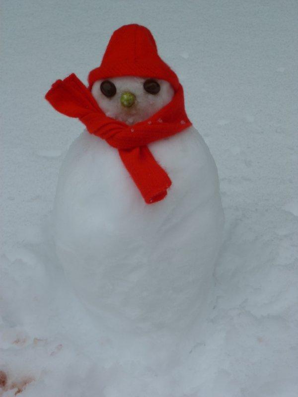 Mes Cathie font un Bonhomme de Neige!