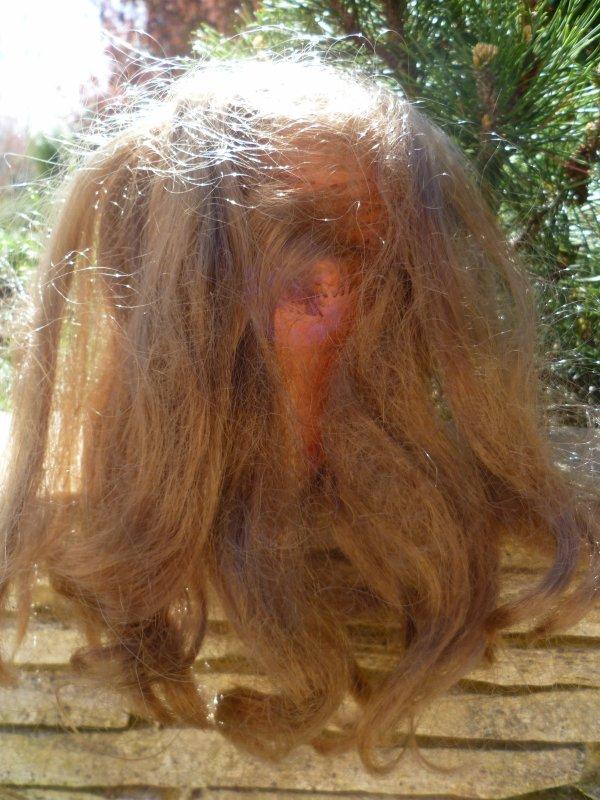 Mes Travaux de vacances...Réimplantation de Betsie,la grande soeur de Cathie