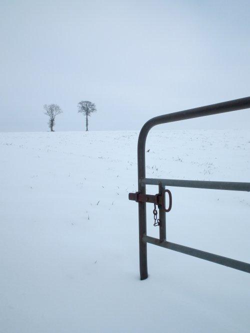 Sortie après la neige