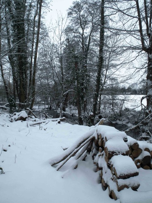 Les rives en hivers