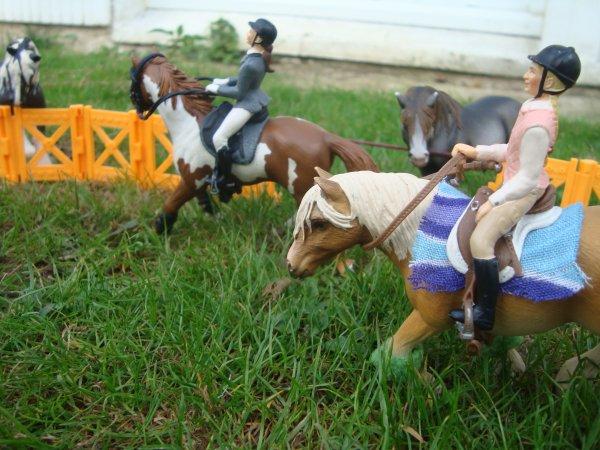 Ma photo pour le photo show de Centre-Equestre-Du-Vernois .